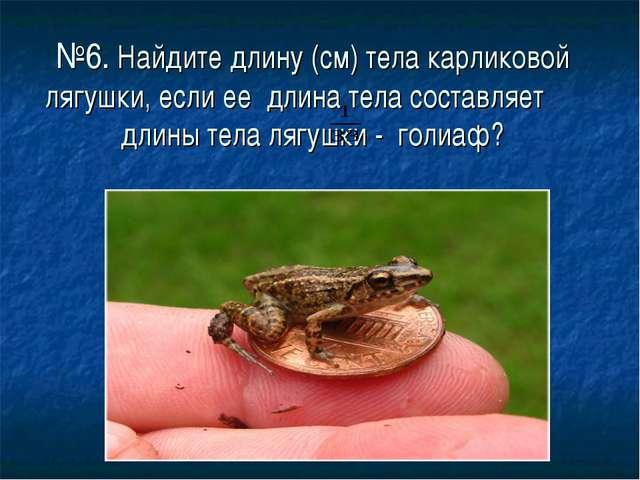 №6. Найдите длину (см) тела карликовой лягушки, если ее длина тела составляет...