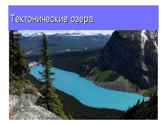 Тектонические озера