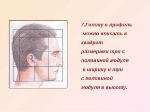 7.Голову в профиль можно вписать в квадрат размерами три с половиной модуля в