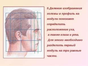 8.Деление изображения головы в профиль на модули помогает определить располож