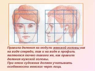 Правила деления на модули женской головы как на виде спереди, так и на виде в