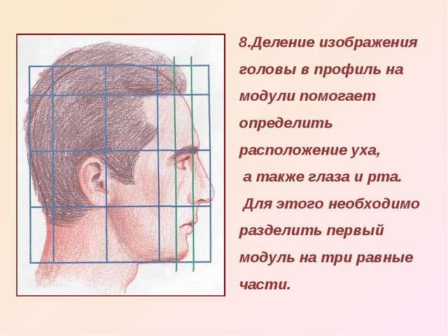 8.Деление изображения головы в профиль на модули помогает определить располож...