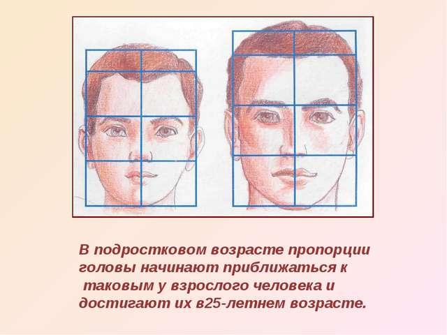 В подростковом возрасте пропорции головы начинают приближаться к таковым у вз...