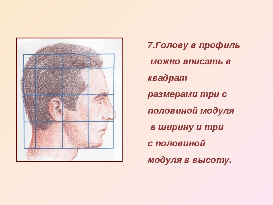 7.Голову в профиль можно вписать в квадрат размерами три с половиной модуля в...