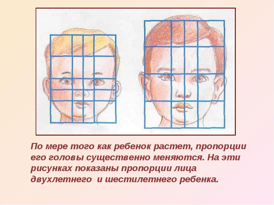 По мере того как ребенок растет, пропорции его головы существенно меняются. Н...