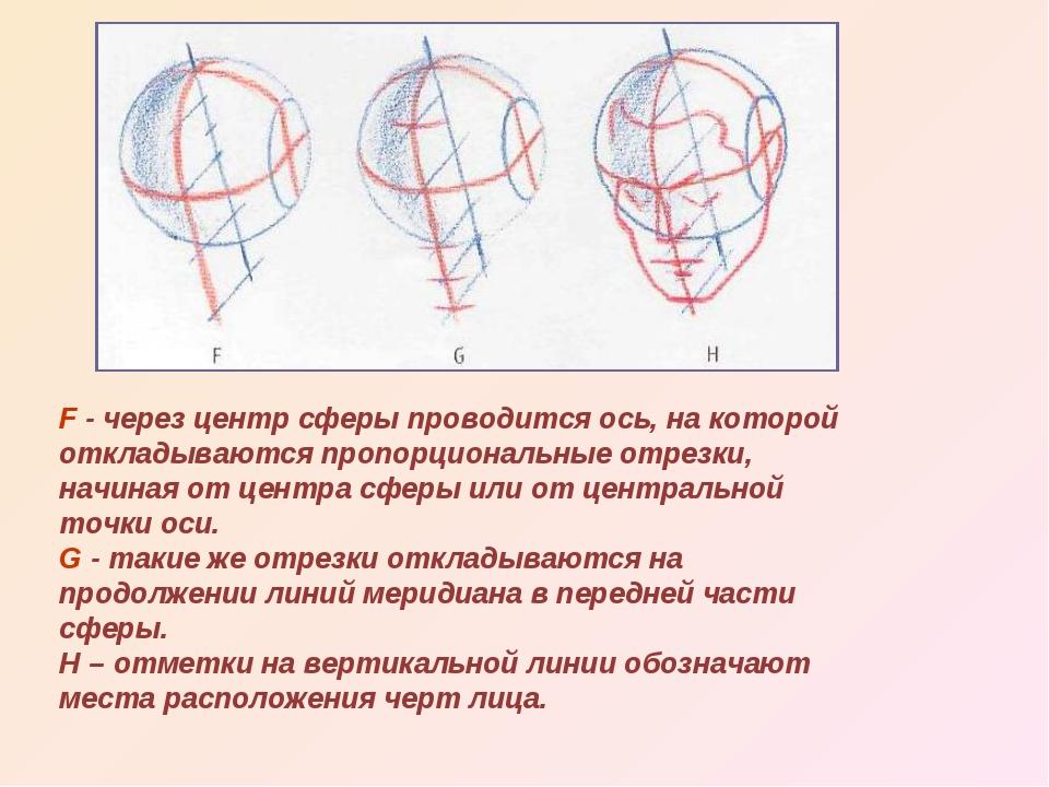 F - через центр сферы проводится ось, на которой откладываются пропорциональн...
