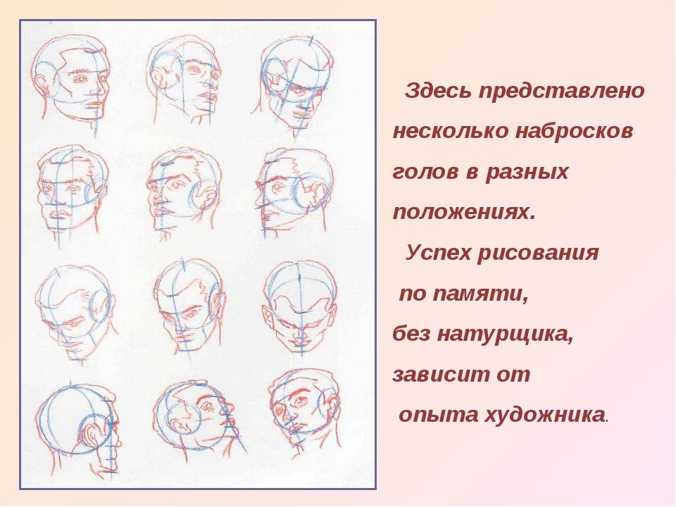 Здесь представлено несколько набросков голов в разных положениях. Успех рисо...