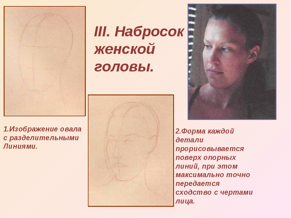 III. Набросок женской головы. 1.Изображение овала с разделительными Линиями....