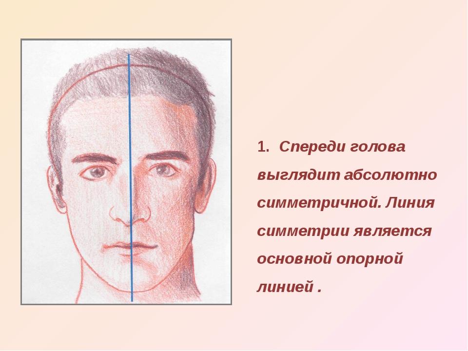 1. Спереди голова выглядит абсолютно симметричной. Линия симметрии является о...