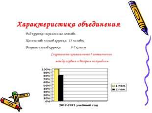 Характеристика объединения Вид кружка: переменного состава. Количество членов