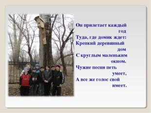 Он прилетает каждый год Туда, где домик ждет: Крепкий деревянный дом С круглы