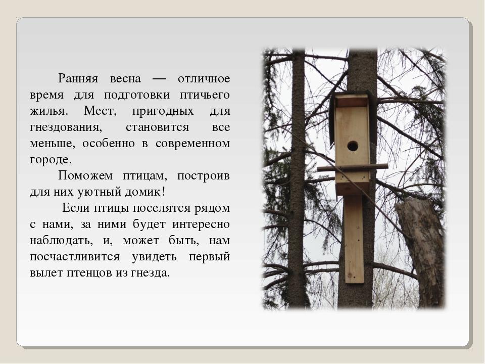 Ранняя весна — отличное время для подготовки птичьего жилья. Мест, пригодных...