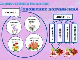 «цветок» «лесные цветы» «полевые цветы» «садовые цветы» «комнатные цветы» «ЦВ