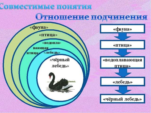 «фауна» «птица» «водопла- вающая птица» «фауна» «лебедь» «чёрный лебедь» «пти...