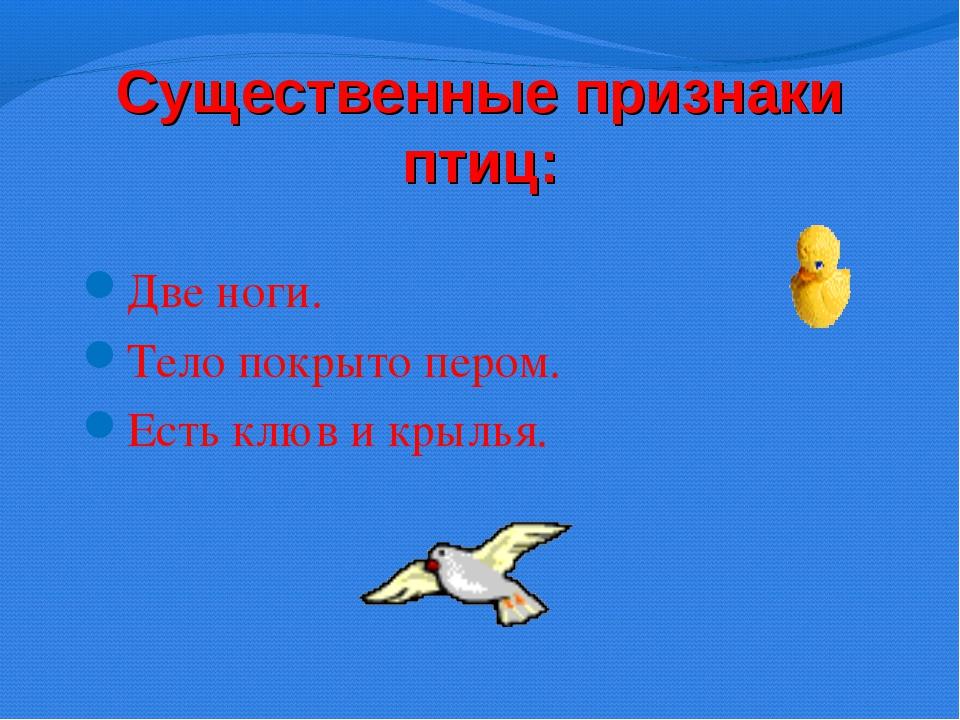 Существенные признаки птиц: Две ноги. Тело покрыто пером. Есть клюв и крылья.