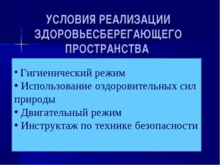 УСЛОВИЯ РЕАЛИЗАЦИИ ЗДОРОВЬЕСБЕРЕГАЮЩЕГО ПРОСТРАНСТВА Гигиенический режим Испо