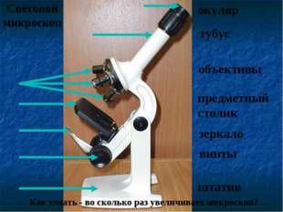 Световой микроскоп Как узнать - во сколько раз увеличивает микроскоп? окуляр