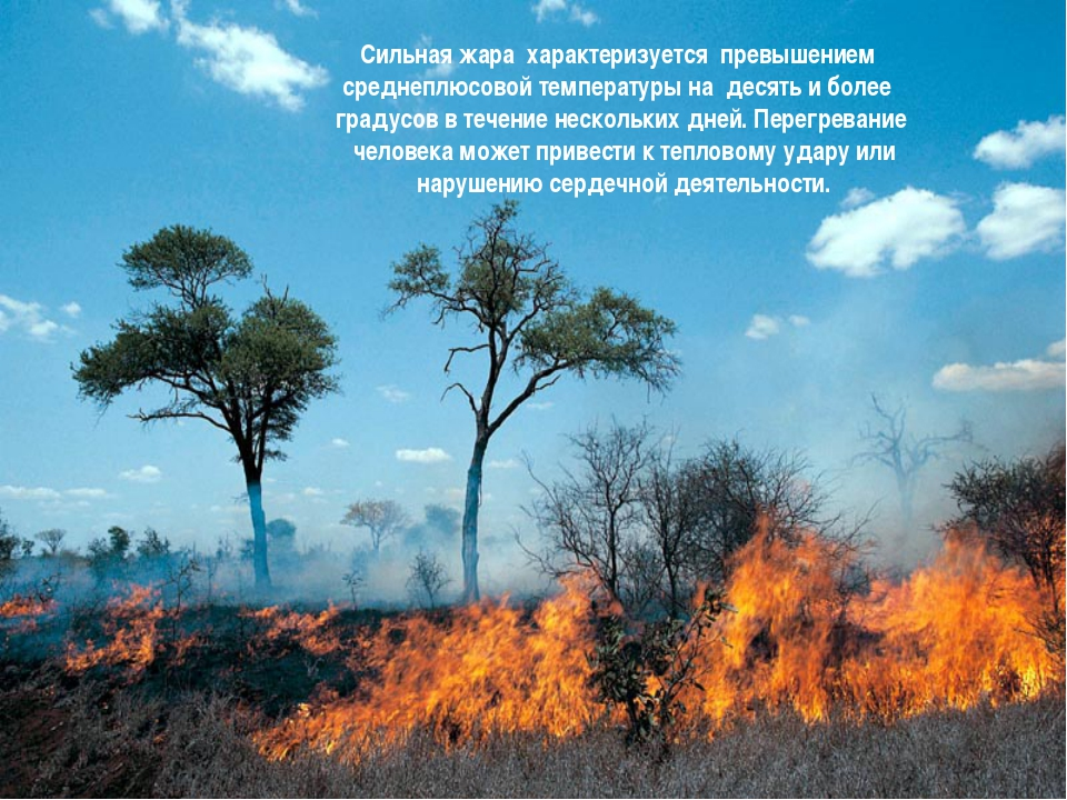 Сильная жара характеризуется превышением  среднеплюсовой температуры на дес...