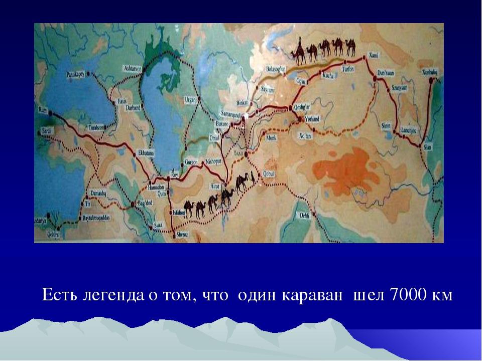 Есть легенда о том, что один караван шел 7000 км