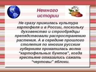 Немного истории Не сразу прижилась культура картофеля и в России, поскольку д