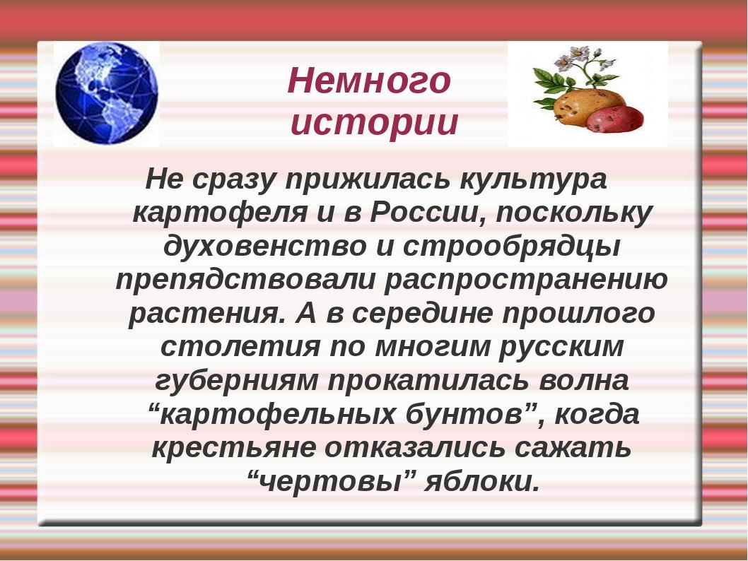 Немного истории Не сразу прижилась культура картофеля и в России, поскольку д...