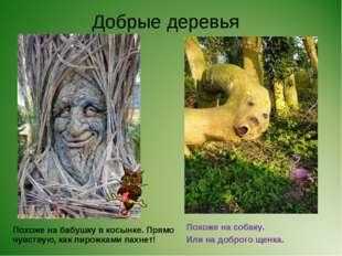 Добрые деревья Похоже на собаку. Или на доброго щенка. Похоже на бабушку в ко