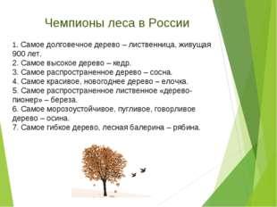 1. Самое долговечное дерево – лиственница, живущая 900 лет. 2. Самое высокое