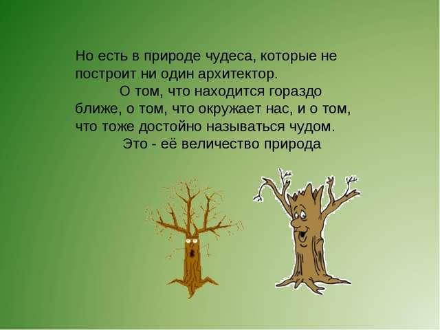 Но есть в природе чудеса, которые не построит ни один архитектор. О том, что...