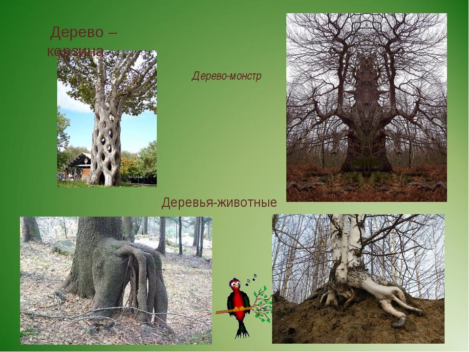 Дерево-монстр Дерево – корзина Деревья-животные