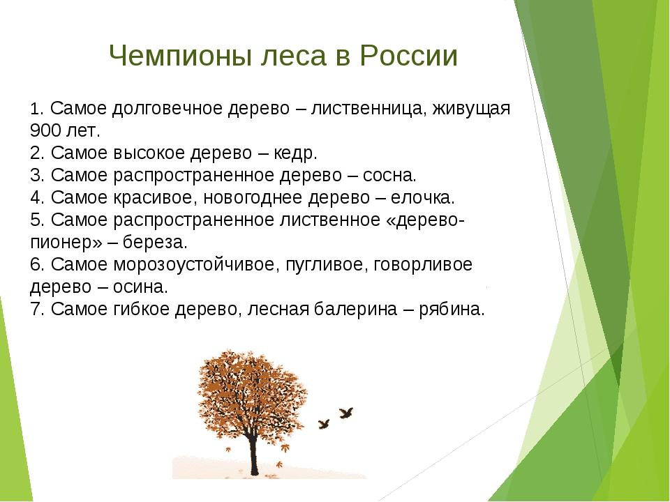1. Самое долговечное дерево – лиственница, живущая 900 лет. 2. Самое высокое...