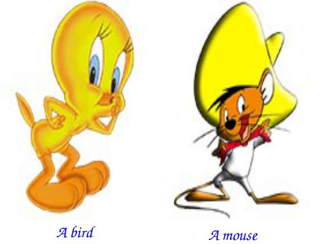 A bird A mouse