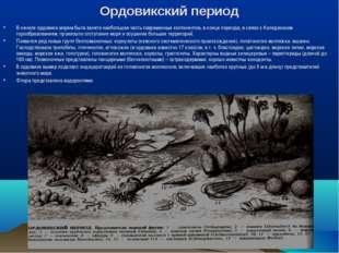 Ордовикский период В начале ордовика морем была занята наибольшая часть совре