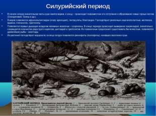 Силурийский период В начале силура значительная часть суши занята морем, к ко