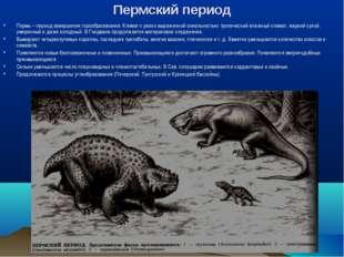 Пермский период Пермь – период завершения горообразования. Климат с резко выр