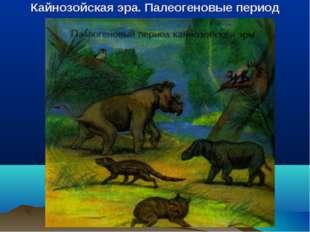Кайнозойская эра. Палеогеновые период