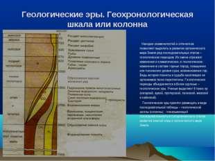 Геологические эры. Геохронологическая шкала или колонна Находки окаменелостей
