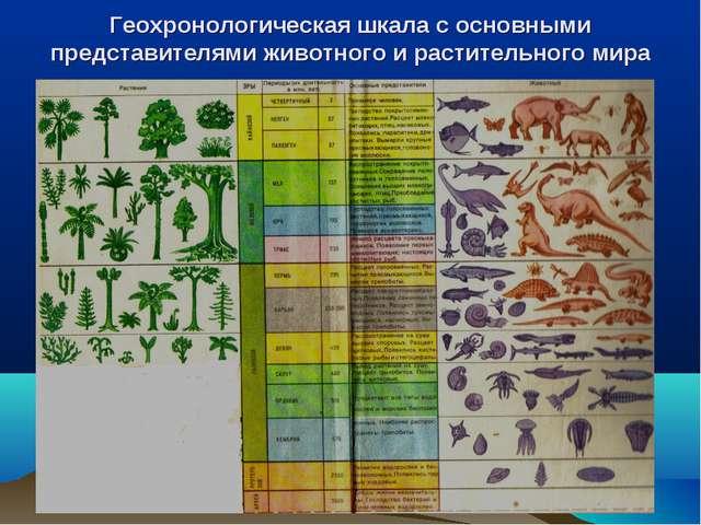 Геохронологическая шкала с основными представителями животного и растительног...