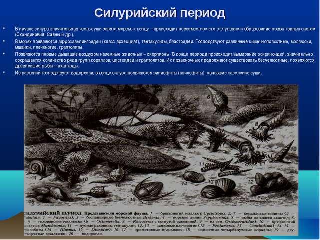 Силурийский период В начале силура значительная часть суши занята морем, к ко...