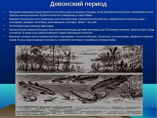 Девонский период Для девона характерна сначала регрессия (отступание моря) на...