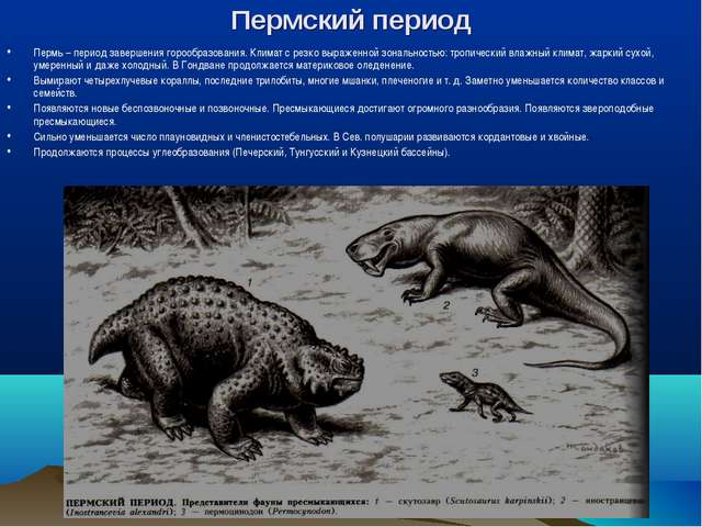 Пермский период Пермь – период завершения горообразования. Климат с резко выр...