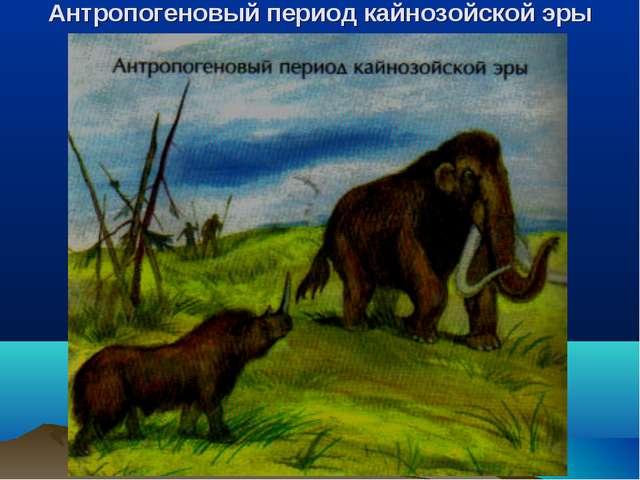 Антропогеновый период кайнозойской эры