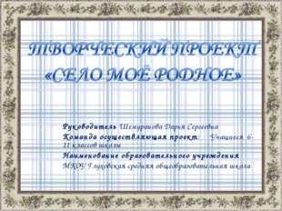 Руководитель Шемуранова Дарья Сергеевна Команда осуществляющая проект: Учащие