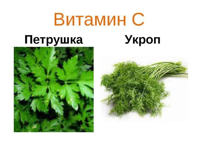 Витамин С Петрушка Укроп
