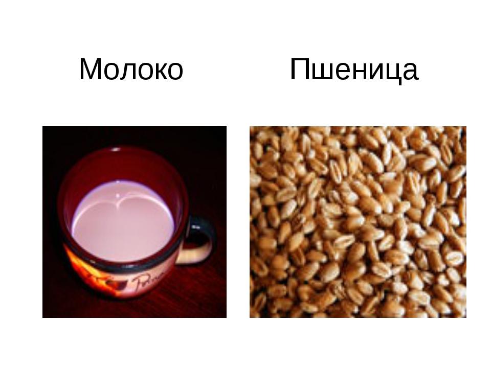Молоко Пшеница