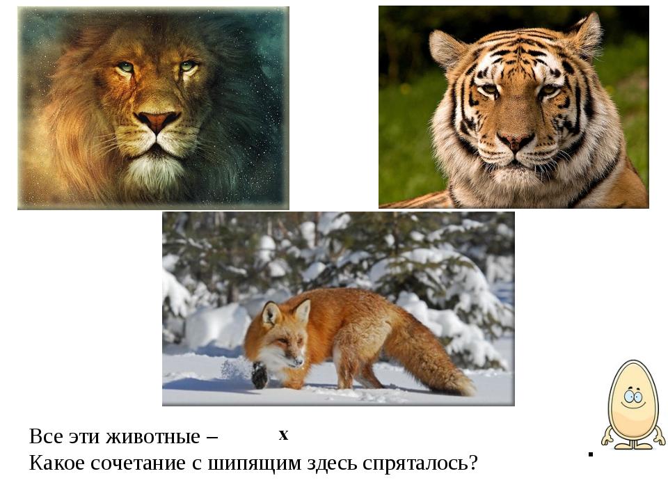 Все эти животные – Какое сочетание с шипящим здесь спряталось? . х
