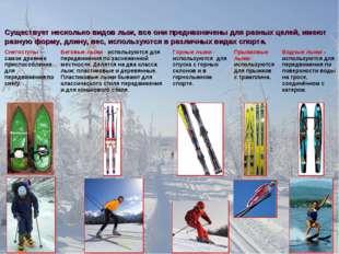 Существует несколько видов лыж, все они предназначены для разных целей, имеют