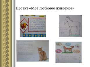 Проект «Моё любимое животное»