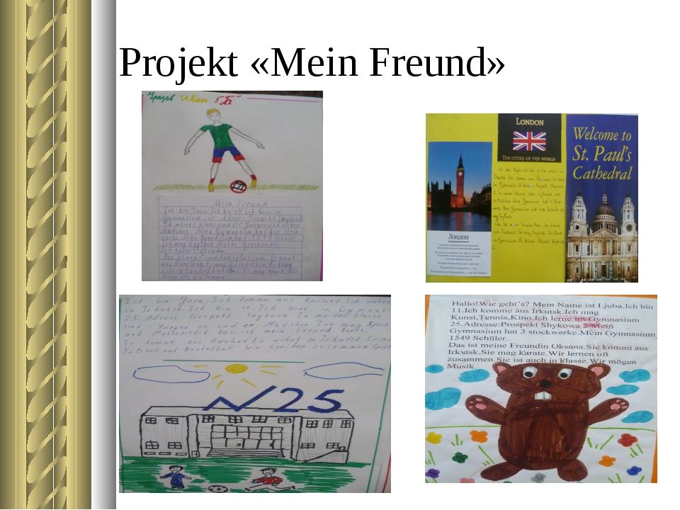 Projekt «Mein Freund»