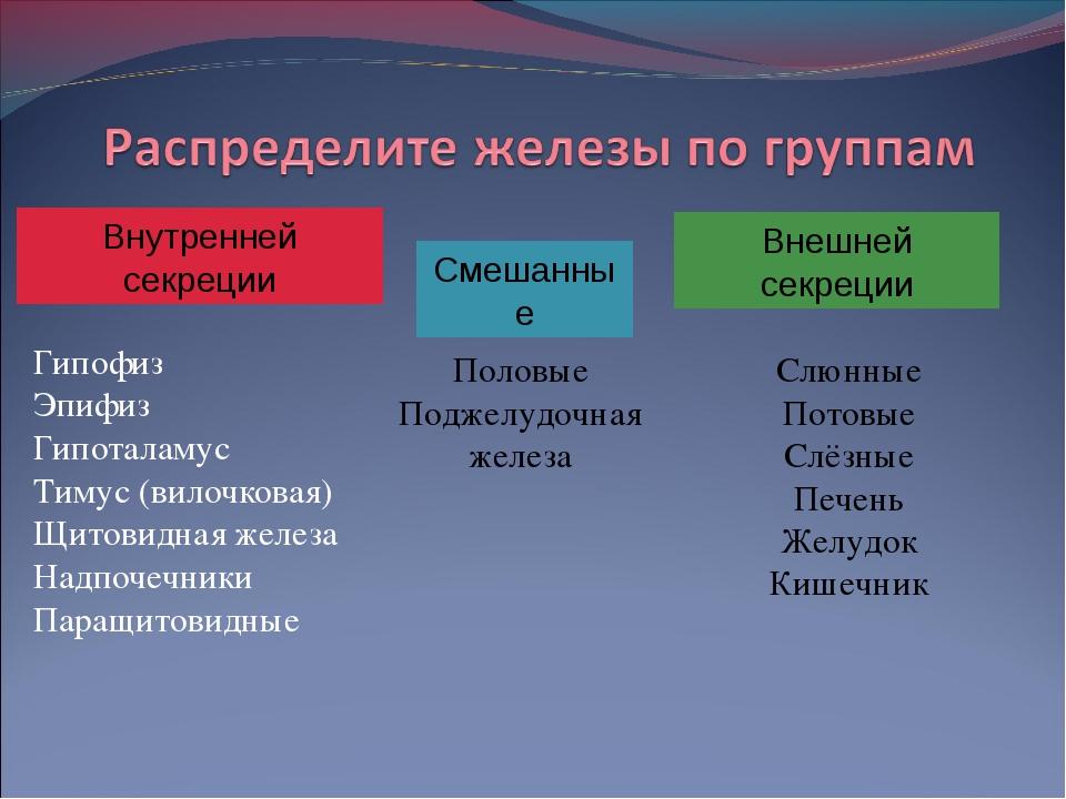 Гипофиз Эпифиз Гипоталамус Тимус (вилочковая) Щитовидная железа Надпочечники...