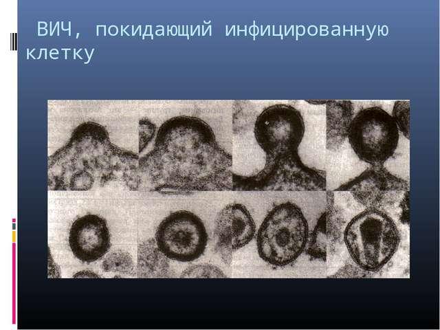 ВИЧ, покидающий инфицированную клетку